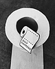 Toilet paper pin 8422 small