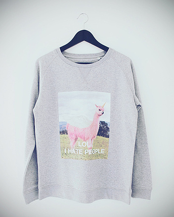 Lamacorn Sweater