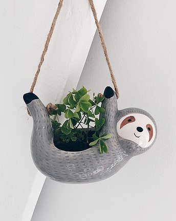 hanging pot sloth