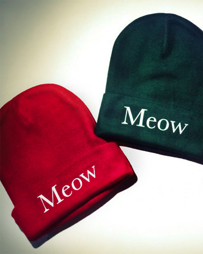 The last meow essay