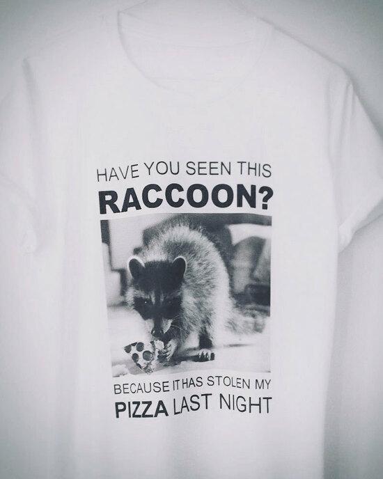 Pizza Raccon
