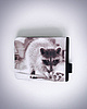 Raccoon wallet 404 small